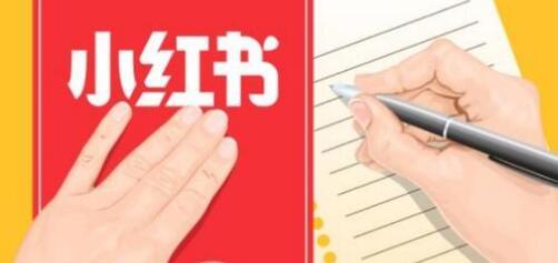 小红书笔记排名, 关于小红书笔记排名不稳定的应对办法!